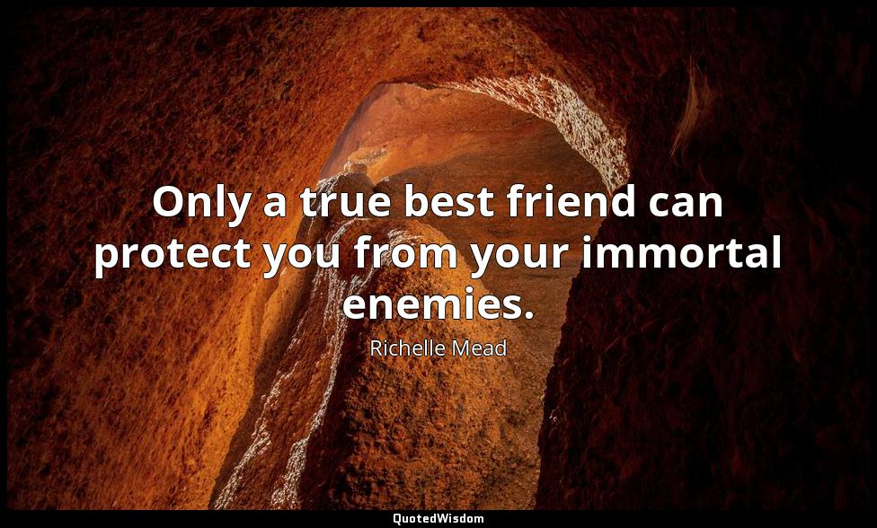 Only a true best friend can protect you from your immortal enemies. Richelle Mead