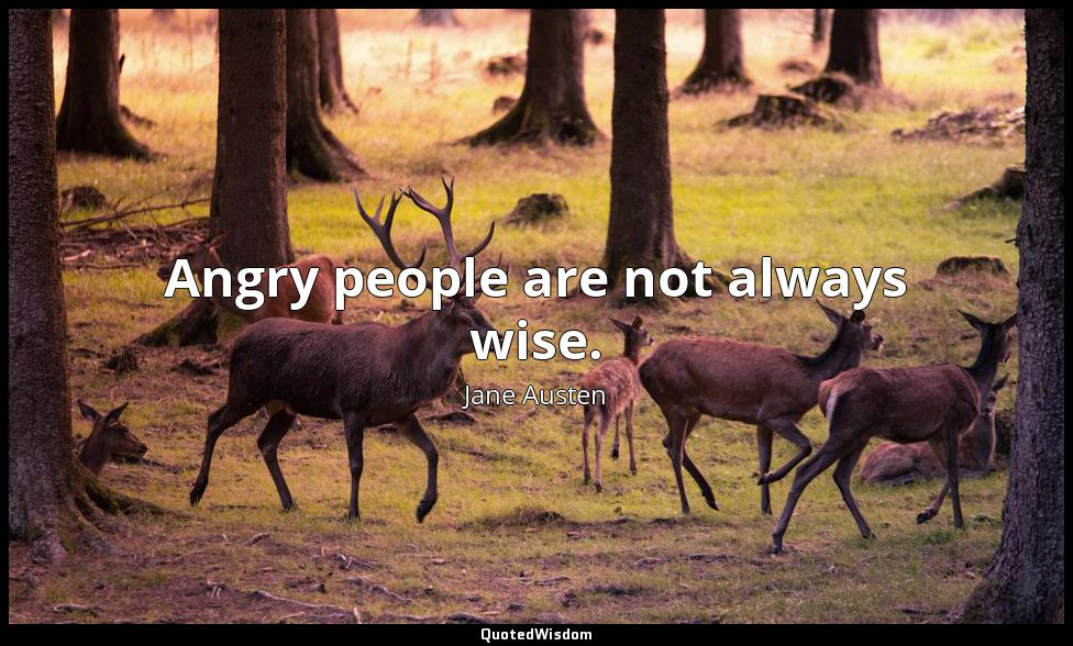 Angry people are not always wise. Jane Austen