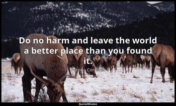 Do no harm and leave the world a better place than you found it. Patricia Cornwell