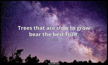 Trees that are slow to grow bear the best fruit. Moliere