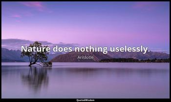 Nature does nothing uselessly. Aristotle